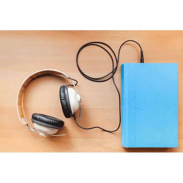 Architect-Audio-Book-icon-2